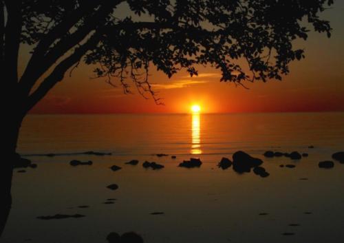 Solnedgang fra Visby